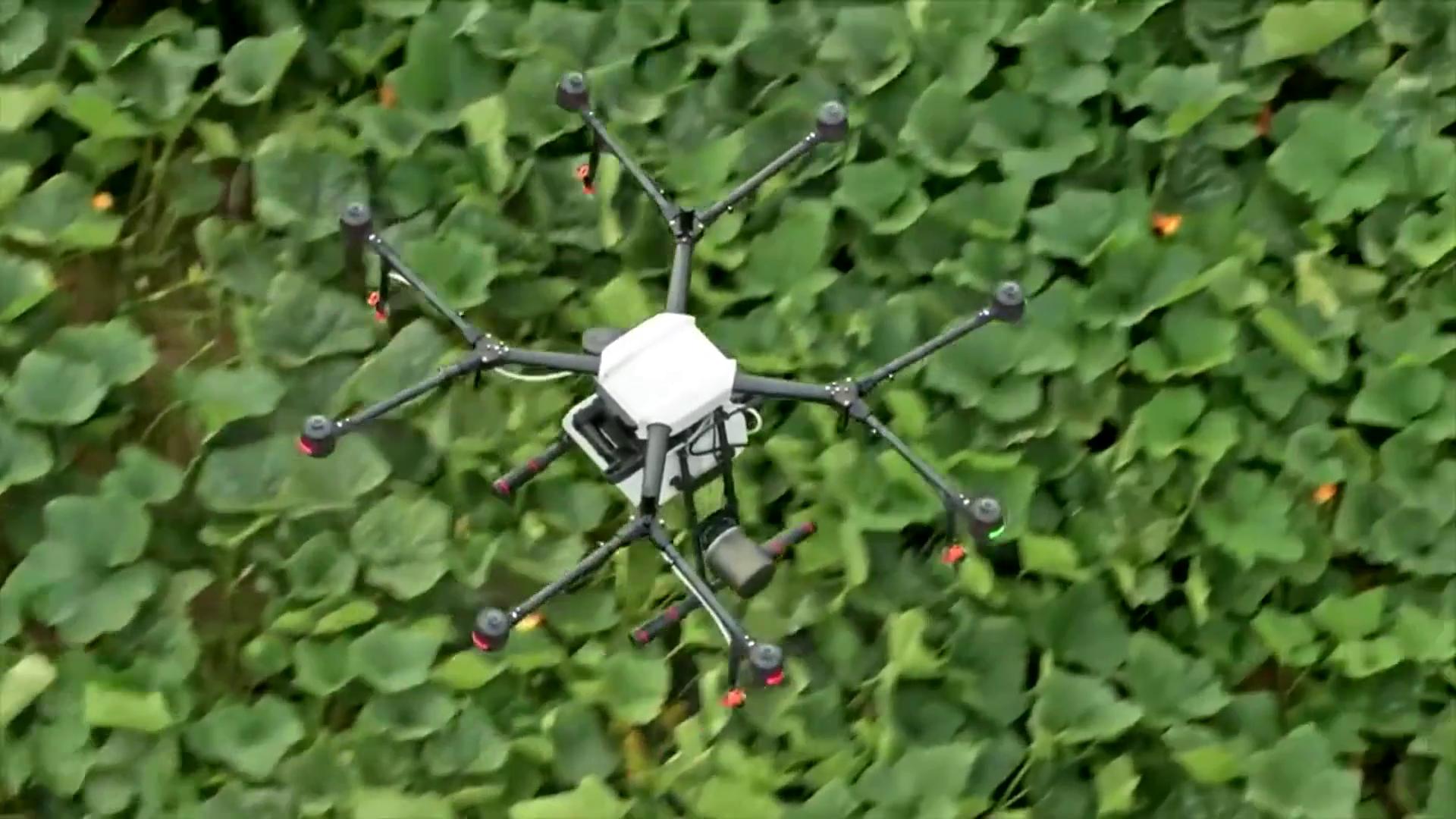 Agricultura de precision con drones